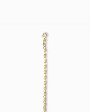 9ct Gold Diamond Cut Belcher Chain
